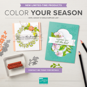Color Your Season-1